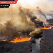 آتش سوزی وسیع جنگلی در محدوده شهر چرنوبیل