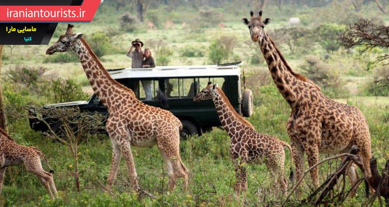 ذخیره گاه ملی ماسایی مارا کشور کنیا